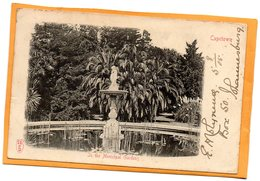 Cape Town South Africa 1905 Postcard Mailed - South Africa