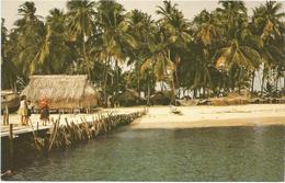 W4210 Panama - Una De Las Islas Del Archipielago De San Blas / Non Viaggiata - Panama