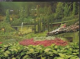 4a EUROFLORA A GENOVA - VIAGGIATA 1981 - Esposizioni