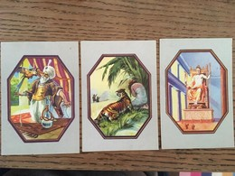 3 Chromos, Blédine, Le Perroquet De L'Empereur Basile, La Tigresse De Maldonata,le Jupiter Olympien - Chromos