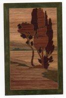Art Nouveau--illustrateur ??--1906--Paysage En Noir Et Brun (imitation Marqueterie Bois ) - Illustratori & Fotografie