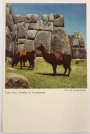 (709) Peru - Cuzco - Ruins Of Sacsahuaman - Lamas - Pérou