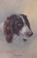 AR56 Animals - Spaniel Dog - Patience - Artist Minnie Keene - Chiens
