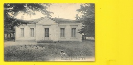 SAINT VIVIEN Rare Domaine De Mirambeau (Marcel Delboy) Gironde (33) - France
