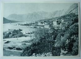 Kotor. - Panorama. - Ca. 1956. - Montenegro