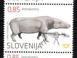 SLOVENIA , 2019, MNH, PREHISTORIC FAUNA, ANTHRACOTHERE, 1v - Stamps
