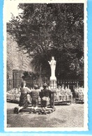 """Religion-Vierge Marie-Beauraing-+/-1960-enfants En Prière Devant La Statue De La Vierge Marie-Edit. """"Pro Maria"""" - Vierge Marie & Madones"""