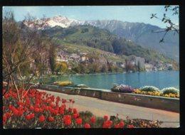 CPM Suisse MONTREUX CLARENS Les Quais Fleuris - VD Vaud