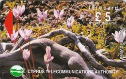 Cyprus, 21CYPA (Ø), £5 Wild Flowers Of Akamas Forest, Gray Stripe On Backside, 2 Scans   With Barred O - Cyprus