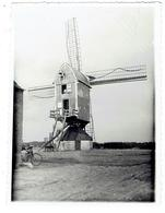 NIEUWMOER - Kalmthout -  Foto 11,5 X 8,5 Cm - Prachtige Opname Molen Juli 1931 - Kalmthout