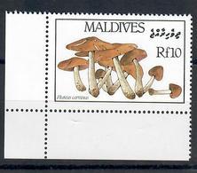 MALDIVE 1986 - FLORA - FUNGHI - 1 VALORE  - MNH ** - Maldive (1965-...)