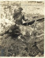 CHASSE HUNTING OURS BEARS OSOS BEREN  10*8CM Fonds Victor FORBIN 1864-1947 - Fotos