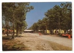 GRAYAN-L'HOPITAL (33) CENTRE NATURISTE EURONAT - Dans La Forêt, Le Centre Commercial - PRIX FIXE - Francia
