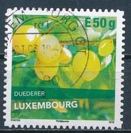 °°° LUXEMBOURG - DUEDERER - 2018 °°° - Usati