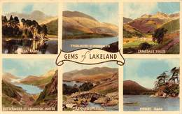 PIE.T.19-8911 : MULTIPLES VUES. GEMS OF LAKELAND - Etats-Unis