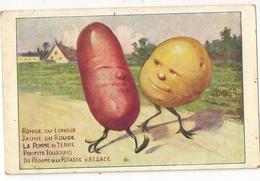 """9 - Potasse D' Alsace- Pommes De Terre  Humanisées """" Surréalisme"""" - Publicité"""