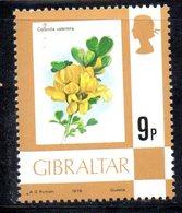 GIBILTERRA 1978 ,  Serie N. 388  MNH  *** - Gibilterra