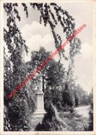 Pensionaat Van Het Heilig Hart Van Maria - Beeld Van Het H. Harrt - 's Gravenwezel - Schilde - Schilde