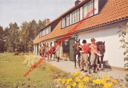 Hof Ter Linden - Ruiters Met Paarden - 's Gravenwezel - Schilde - Schilde