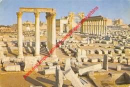 Palmyra - General View - Syrie Syria - Syrie