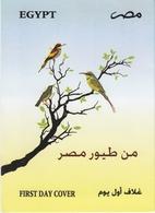 Egypt 2014 - Birds - FDC Publication Folder - Zangvogels