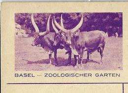 Carte Illustrée Obl. N° 139 - 037  BASEL - ZOOLOGISCHER GARTEN  Obl. Betlis 17/11/38 - Enteros Postales