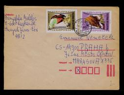 Eagles Aigles Rapaces Diurnes Birds Oiseaux Faune Cover 1962 Gc4147 - Aigles & Rapaces Diurnes