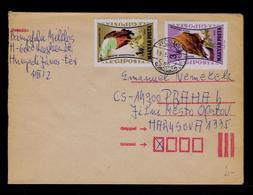Eagles Aigles Rapaces Diurnes Birds Oiseaux Faune Cover 1962 Gc4147 - Aquile & Rapaci Diurni