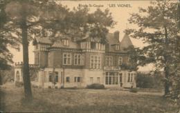 BE SAINT GENESE / Les Vignes / - Belgique