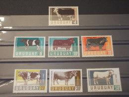 URUGUAY - P.A. 1966 ANIMALI 7 VALORI - NUOVI(++) - Uruguay