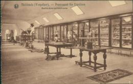 BE THILDONCK / Pensionnat Des Ursulines - Salle Des Collections / - Belgique