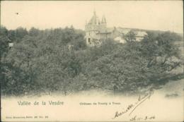 BE TROOZ / Château De Trumly / - Trooz