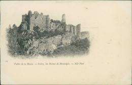 BE YVOIR / Les Ruines De Montaigle / - Yvoir
