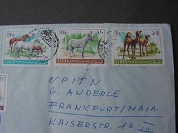 Libanon Horses On  Cv. 1973 - Liban