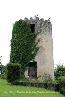 Blaye (33)- Moulin De La Cité Paulin (Edition à Tirage Limité) - Blaye