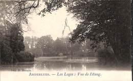 Anderlues - Les Loges : Vue De L'étang (précurseur, 1903) - Anderlues