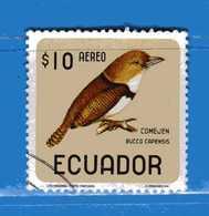 Ecuador °- 1966 - Oiseaux - Birds - BUCCO.  Yvert. 449  -  Used. - Ecuador