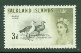 Falkland Is: 1960/66   QE II - Birds   SG197    3d      MNH - Falkland Islands