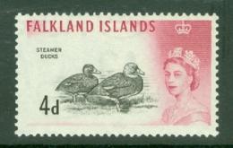 Falkland Is: 1960/66   QE II - Birds   SG198    4d      MNH - Falkland Islands