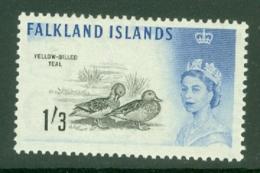 Falkland Is: 1960/66   QE II - Birds   SG203    1/3d      MNH - Falkland Islands