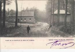 Place De La Chapelle Au Bois De Flobecq - Animé - 1905 - Edit. Victor De Ruyver, Nederbrakel - Flobecq - Vloesberg