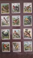 Serie De 12 Images Café Gilbert Les Oiseaux - Tea & Coffee Manufacturers