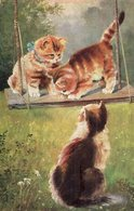 3460 Cpa Animaux - Chats, Illustrateur Signé - Katten