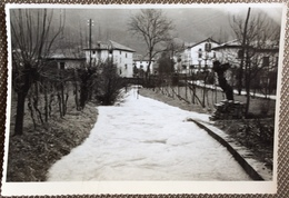 1960 GEMONA DEL FRIULI / Udine / Fotografia Di Piazza - Plaatsen