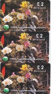 Cyprus, 16CYPA, 17CYPA And 18CYPA, £2 Wild Flowers Of Akamas Forest, Gray Stripe On Backside, 2 Scans - Cyprus