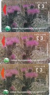 Cyprus, 19CYPA, 20CYPA (grey) And 20CYPA (white), £3 Wild Flowers Of Akamas Forest, 2 Scans - Cyprus