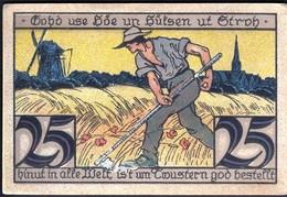 Germany Twistringen 1921 / 25 Pfennig / Landarbeiter Mit Sense / Gutschein / Notgeld, Banknote - [11] Lokale Uitgaven