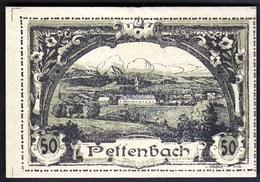 Austria Pettenbach In Ober-Österreich 1920 / 50 Heller / Gutschein / Ortsansicht / Notgeld, Banknote - Oesterreich