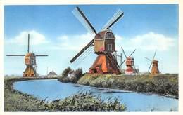 Windmolen Molen Windmill  Moulin à Vent  Zuidland Molendijk       L 519 - Windmolens