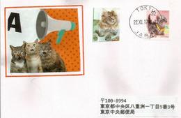 Cat As Pet In Japan, Letter From Tokyo - Hauskatzen